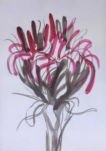 Gymea lilly 2-Ink brush and watercolour on paper-76cm by 100cm unframed-David K Wiggs