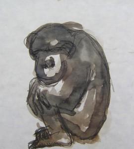 chimp95